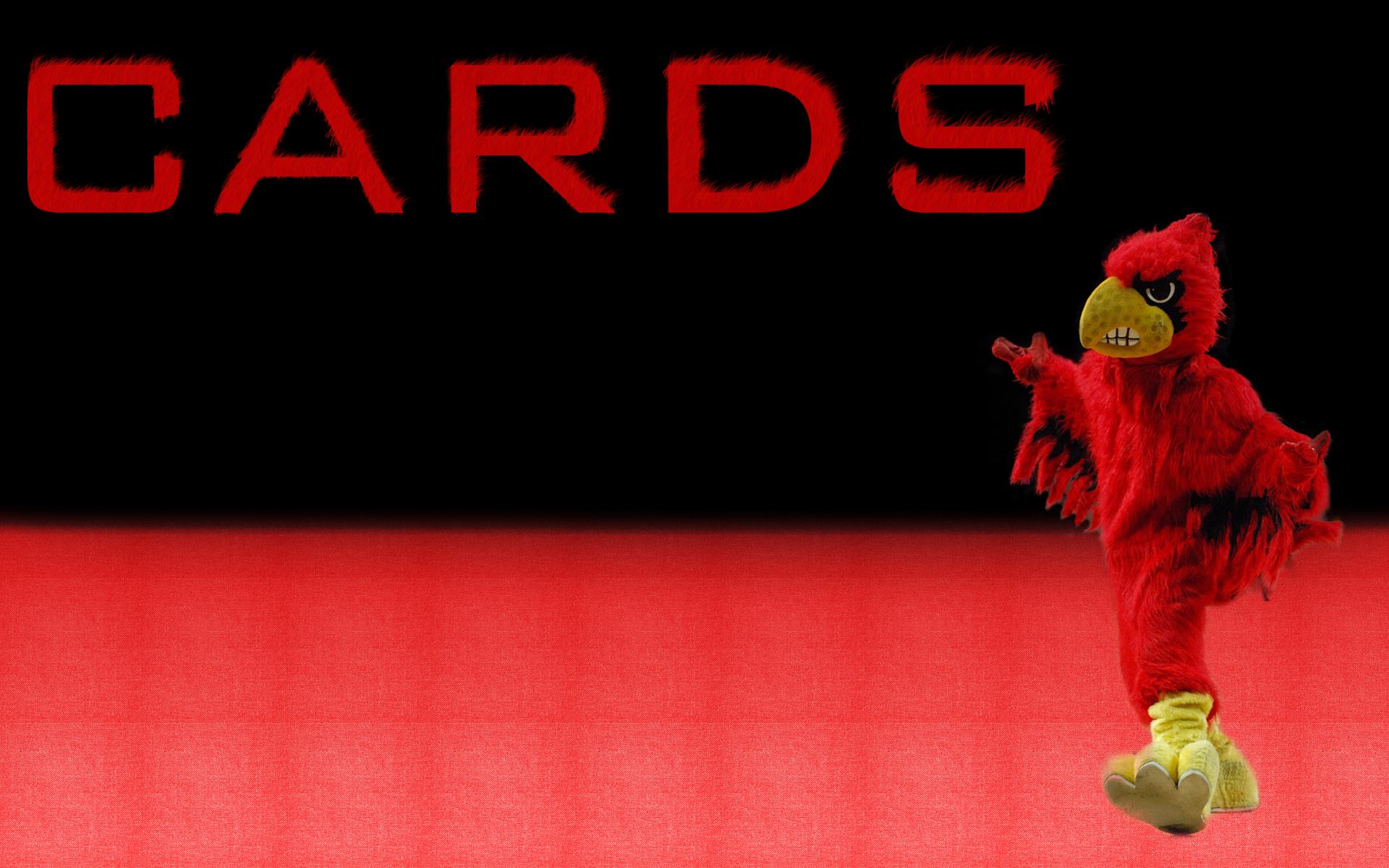 louisville cardinals wallpaper 434911